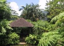 Les sites qui méritent un détour en Martinique